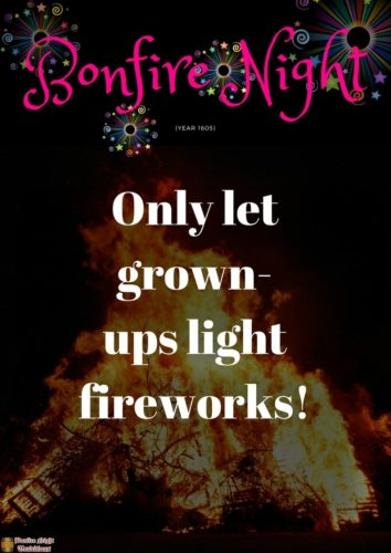 Bonfire night only let grown-ups light fireworks!
