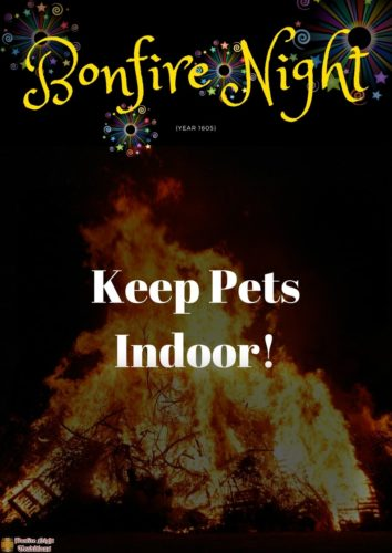 Bonfire night Keep pets indoor